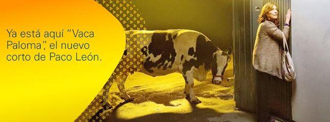Cinergía, Cinergía de Gas Natural Fenosa presenta un nuevo cortometraje