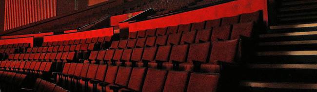 cine, Resumen de una semana… ¡de cine!