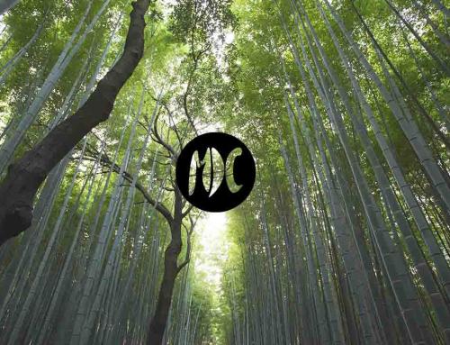 Canciones por el Día de la Madre Tierra
