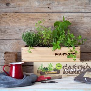 Una manera de cultivar plantas aromáticas listas para consumir.