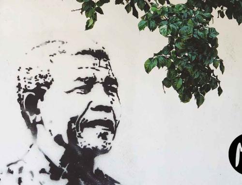 Literatura por el Día Internacional de Nelson Mandela