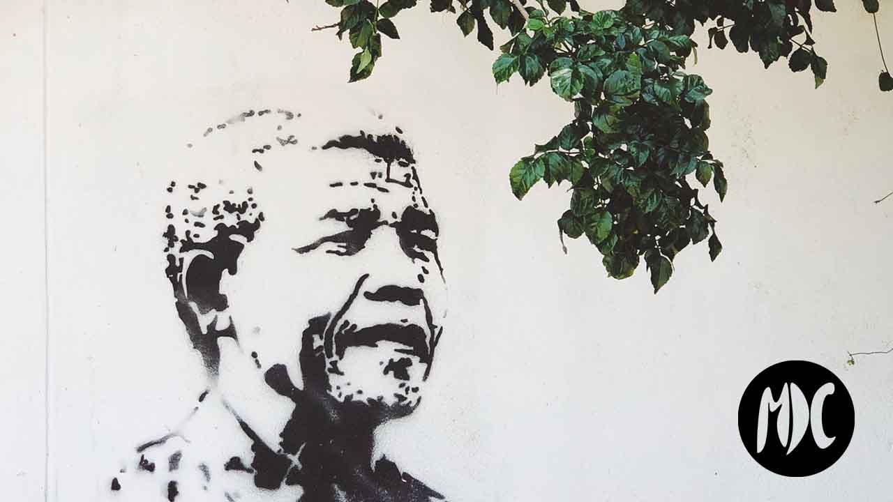 Nelson Mandela, Literatura por el Día Internacional de Nelson Mandela