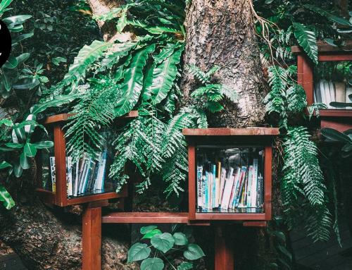Mi casa es una selva