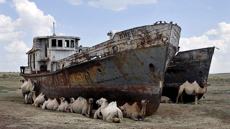 mar de aral, ¿Puede un festival de música salvar a un mar del olvido?