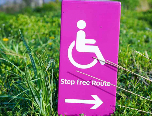 Día Internacional de las Personas con Discapacidad, un repaso audiovisual