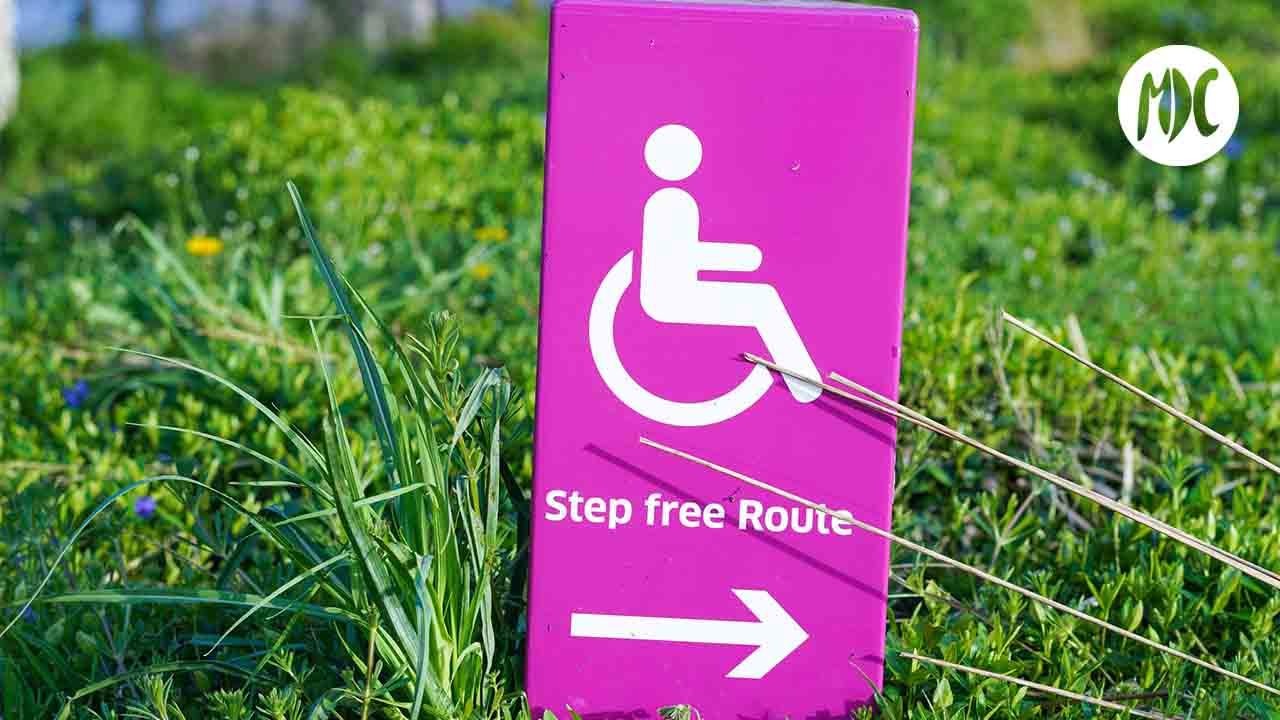 Discapacidad, Día Internacional de las Personas con Discapacidad, un repaso audiovisual