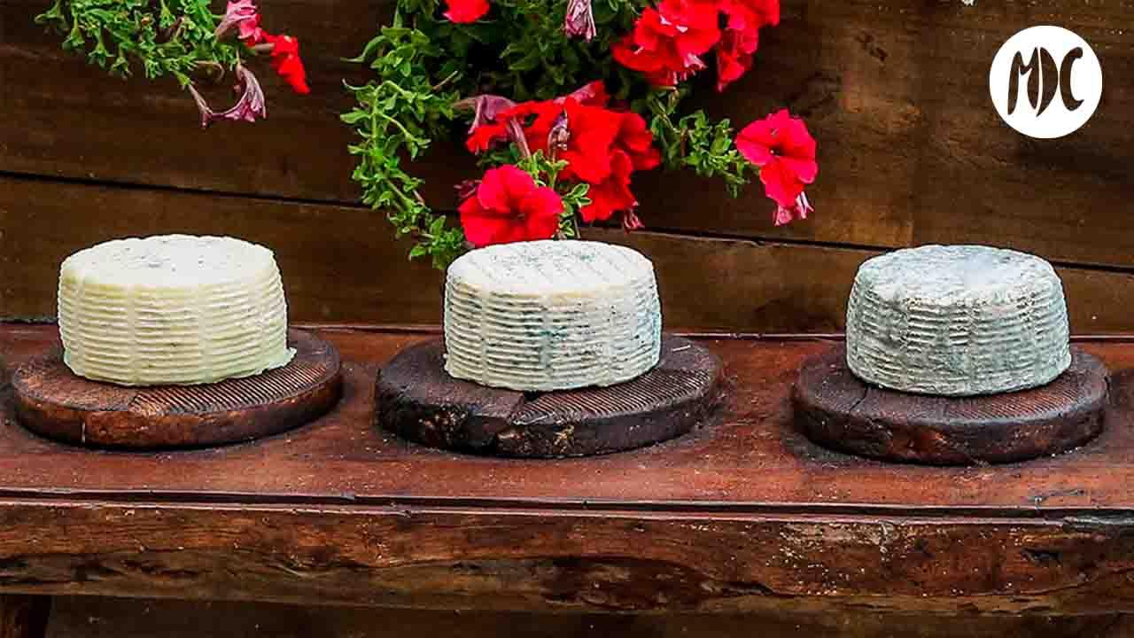 queso, Queso Los Cameros: sabor, tradición y premios