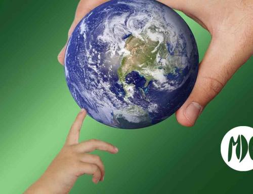 La marea verde de Fridays for Future se desata en 92 países del mundo.