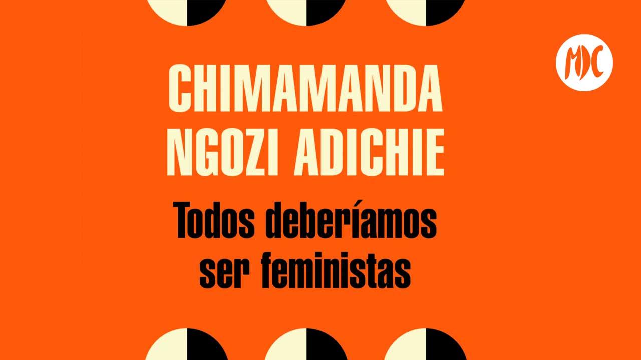 Todos deberíamos ser feministas, Todos deberíamos ser feministas un ensayo para leer en el metro