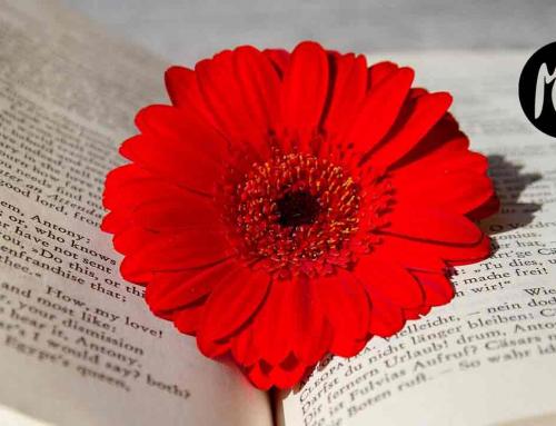 Hoy, 21 de Marzo, es el Día Mundial de la Poesía