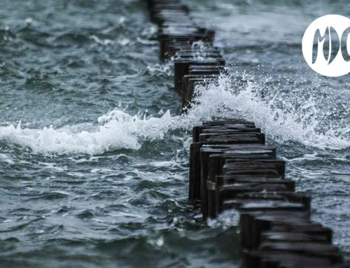 Sea Wall. Cómo manejar la vida después de una tragedia.