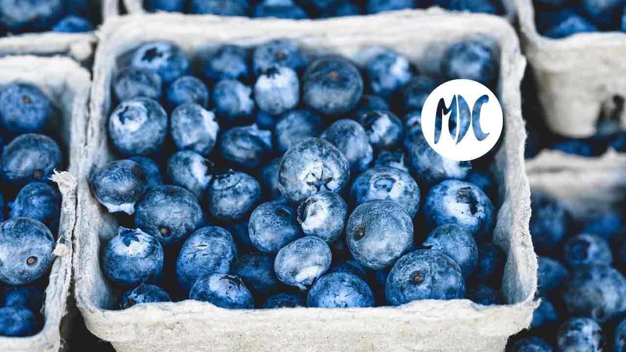 Hay Festival, El Plan OMD de Suzy Amis Cameron: cambia una comida al día y protegerás el planeta.