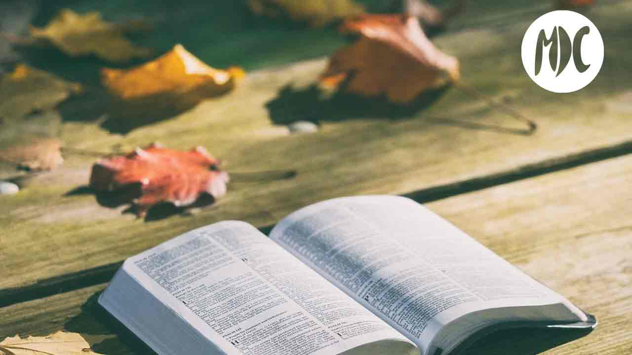 libros, Libros para leer en otoño