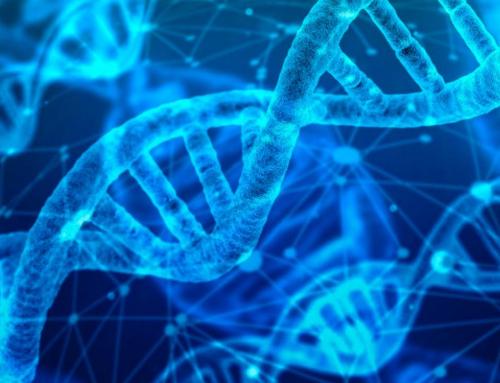 24Genetics y el boom de los test de ADN en España