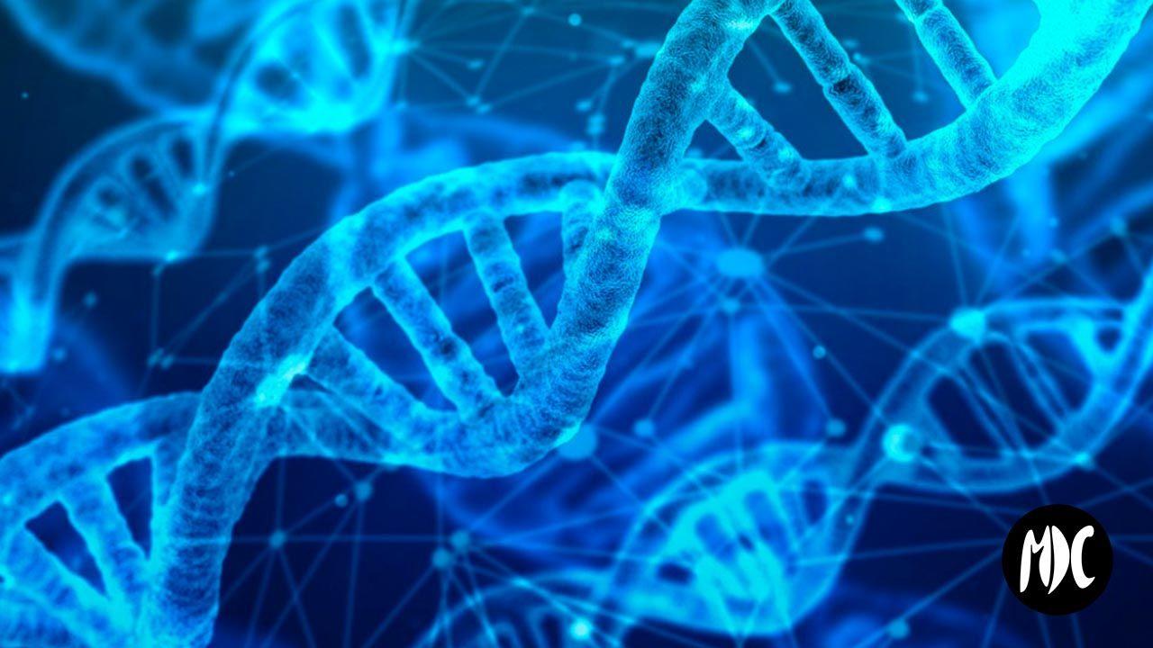 ADN, 24Genetics y el boom de los test de ADN en España