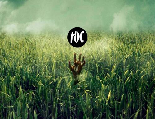 En la hierba alta: otro Stephen King que no convence