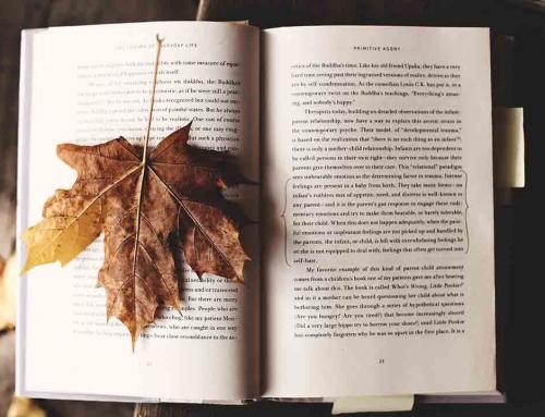Fiesta del libro en Amazon: descuentos especiales