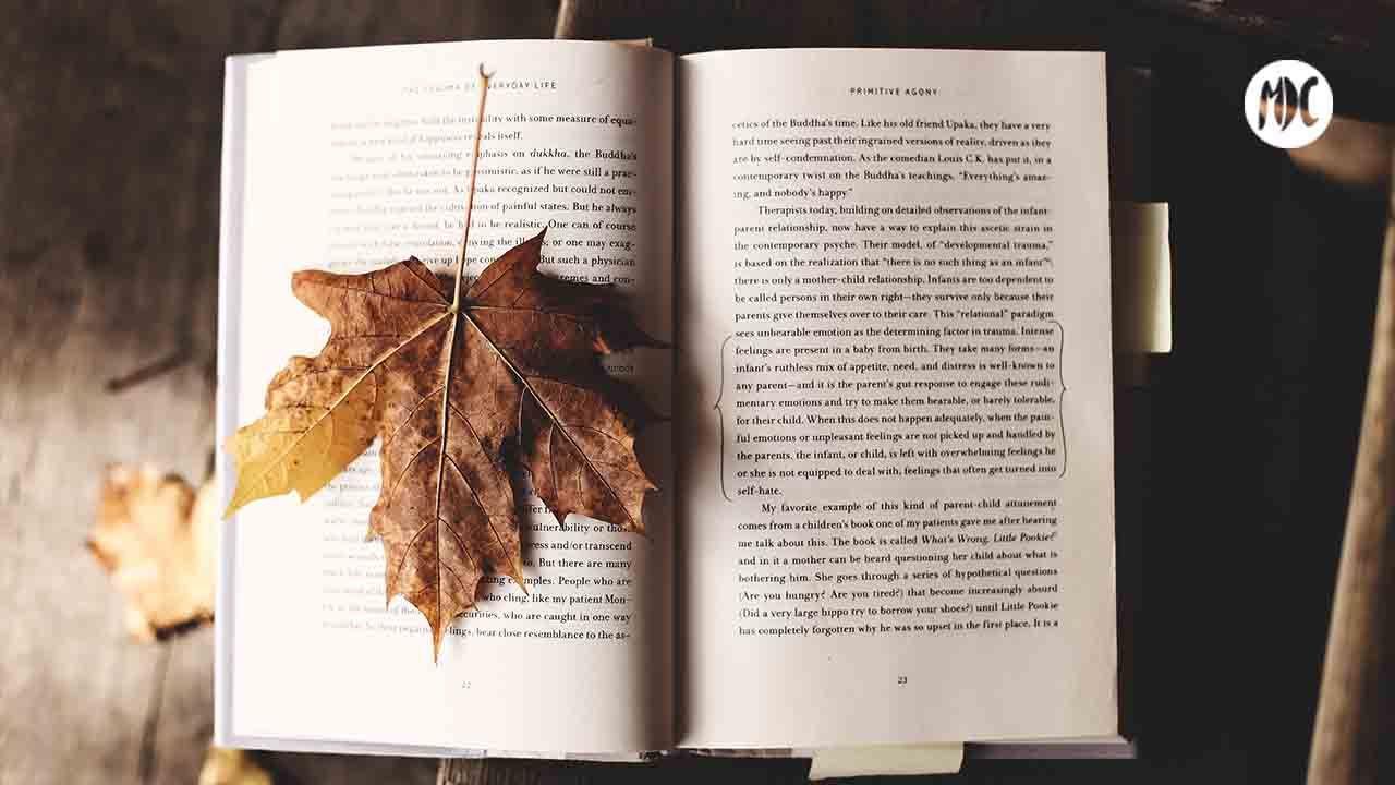 Fiesta del libro, Fiesta del libro en Amazon: descuentos especiales