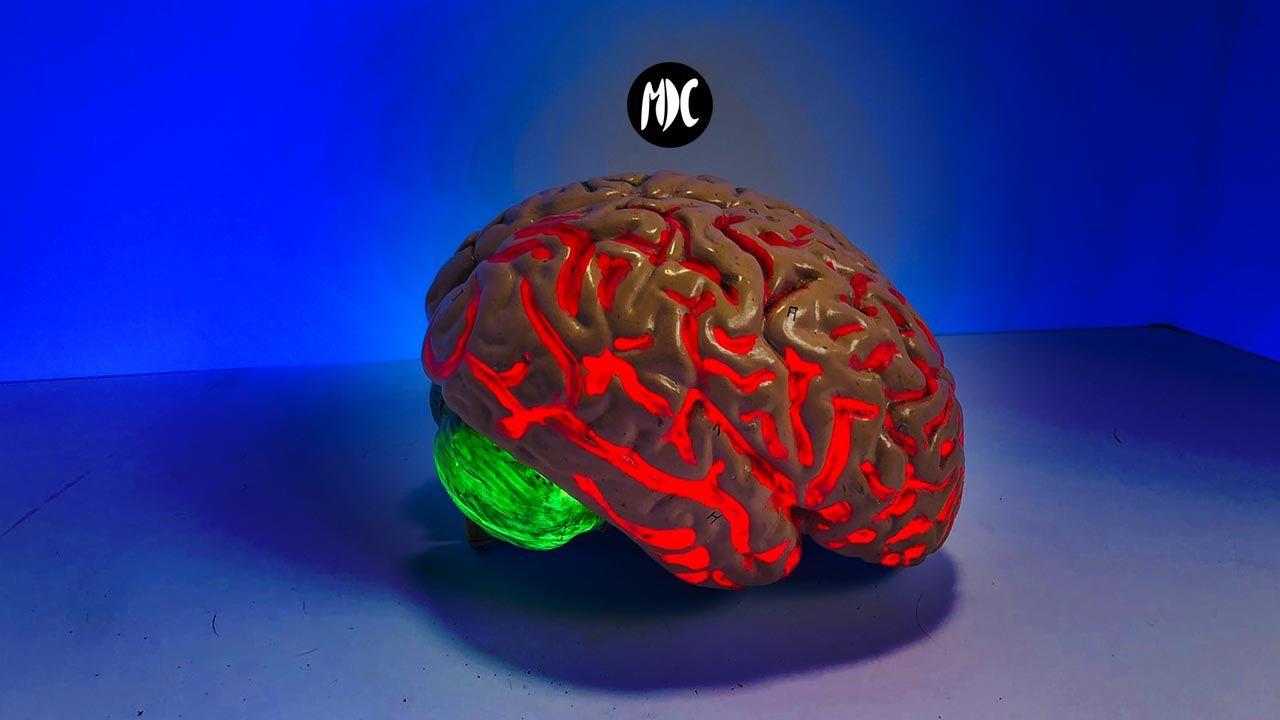 ASMR orgasmo cerebral