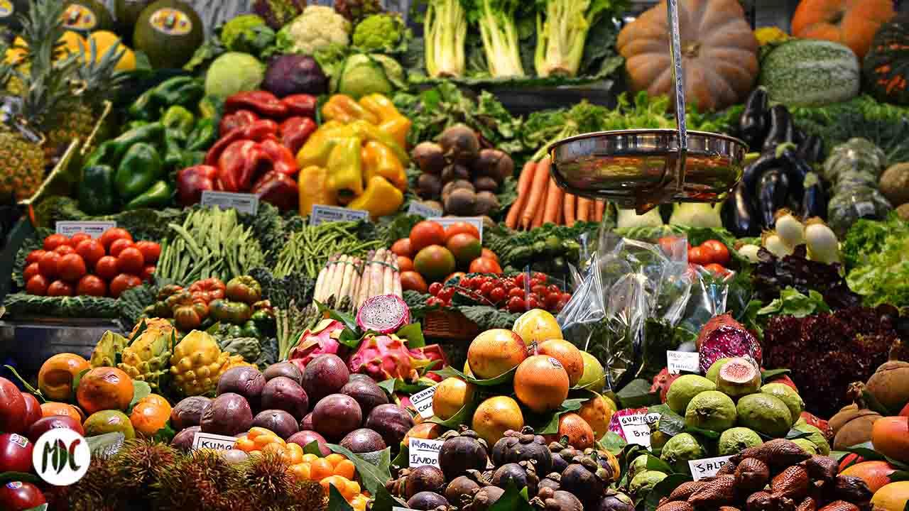 Lola Market, Lola Market, o el supermercado sin salir de casa