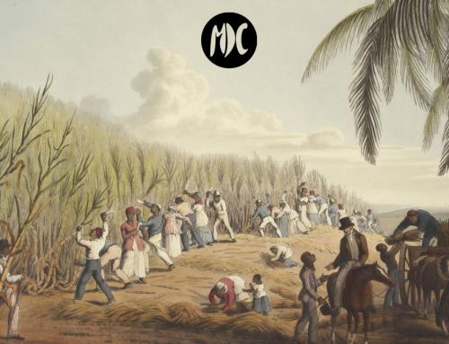 Vida de un esclavo americano, literatura para entender el peso de la historia