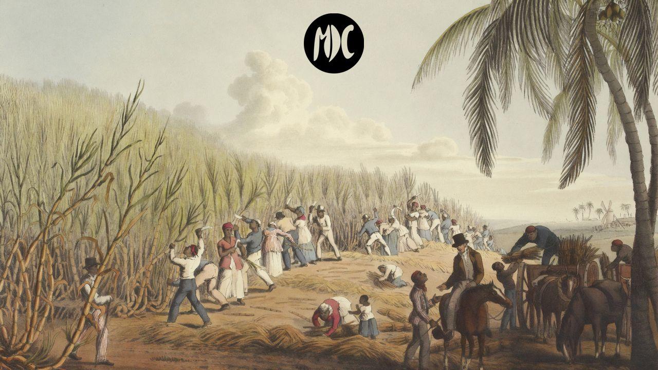 Vida de un esclavo americano, Vida de un esclavo americano, literatura para entender el peso de la historia