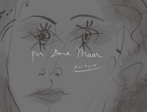 Libro de lujo de Pablo Picasso