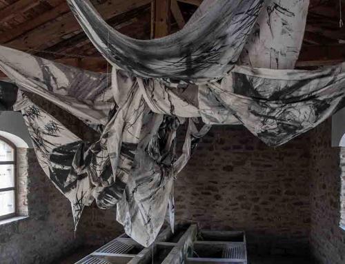 """Fragmentos Rituales"" de Zorromono desembarca en EspacioArteVACA"