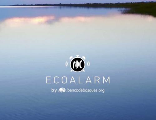 EcoAlarm: Comenzar el día escuchando y ayudando a la naturaleza