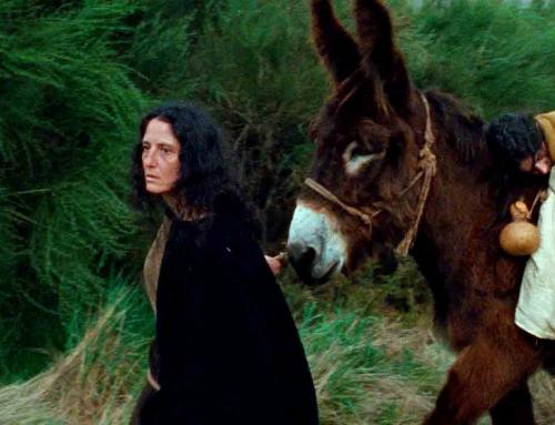 Eles transportan a morte participa en la sección Zabaltegi-Tabakalera de la 69 edición del Festival de Cine de San Sebastián