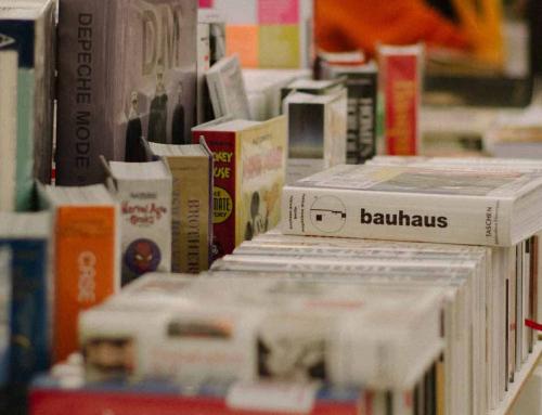 BOCEMALee: La sierra de Madrid recoge el legado de La noche de los libros